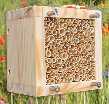 wildbienen-nistblock-mit-vogelschutz-kl