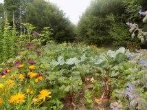 Bio Gemüsegarten