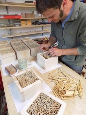 Bau von Wildbienen Nisthilfen