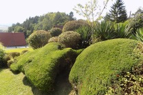 Strauchschnitt / Staudenschnitt / Bodendeckerschnitt / Gartenpflege im Herbst